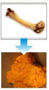 Mesin Penggiling Tulang Kering dan Basah (bone Grinder) 3