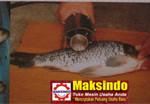 Jual Mesin Penghilang Sisik Ikan di Palembang