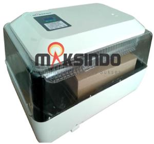 mesin-penetas-telur-6-maksindo-palembang (1)