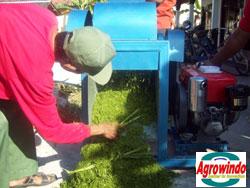 mesin-grinder-kompos-organik-5-tokomesin-palembang (1)