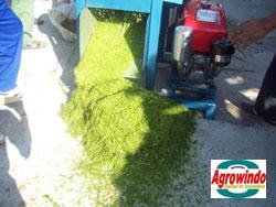 mesin-grinder-kompos-organik-5-tokomesin-palembang (5)
