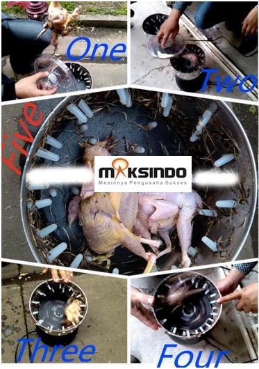 Jual Mesin Pencabut Bulu Burung Puyuh – Merpati di Palembang