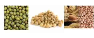 Mesin-Pulp-Grinder-Pembubur-Kacang-Kacangan-3-maksindopalembang (1)