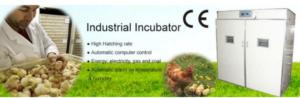 mesin-tetas-telur-industri