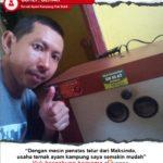 Ternak Ayam Kampung Pak Suhli : Usaha Ternak Kami Semakin Lancar Dengan Tetas Telur Maksindo
